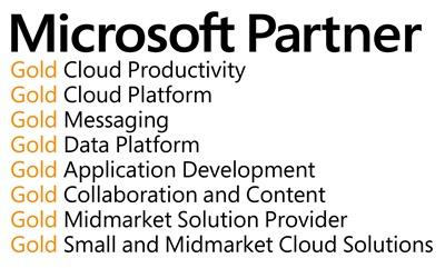 Microsoft-Partner-logo-atwork