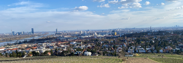 View over Vienna